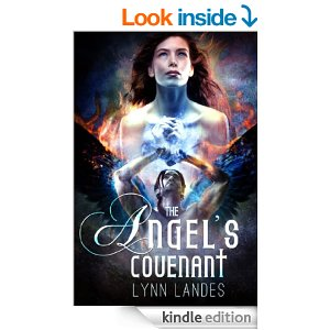 The-Angels-Covenant
