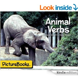 animal-verbs