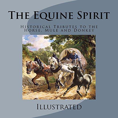 Free: The Equine Spirit