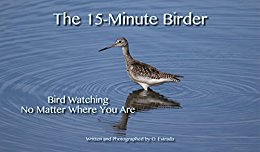The 15-Minute Birde, Bird Watching No Matter Where You Are