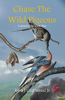 Chase The Wild Pigeons