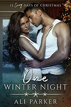 Free: One Winter Night
