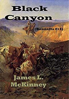 Black Canyon (Bonnetts #14)