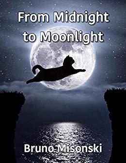 Free: From Midnight to Moonlight