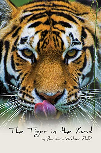 Free: The Tiger in the Yard